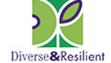Diverse & Resilient logo